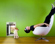 Die Hunde- & Katzenklappe 2.0 — petWALK machts möglich!